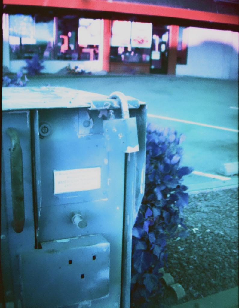 Locked in Flowers